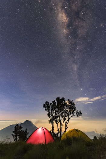 starry night at pos 3 Merbabu mount, Indonesia Astronomy Galaxy Space Astrology Sign Star Trail Milky Way Tree Star - Space Constellation Star Field EyeEmNewHere HUAWEI Photo Award: After Dark