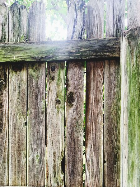 Wooden Post Wood - Material Day No People Nature Fence Rotting Wood First Eyeem Photo