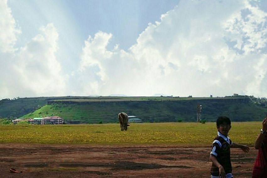 Landscape_Collection Beauty In Nature India Panchgani, Maharashtra,india Nature Mammal Full Length Childhood Cloud - Sky One Person People Outdoors Agriculture Day Sky Adult