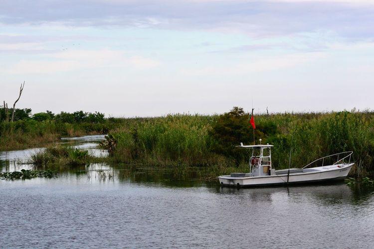 Skiff on Lake Okeechobee Lake Okeechobee Boat Florida Clewiston Skiff Q Quag Quagmire Marshland