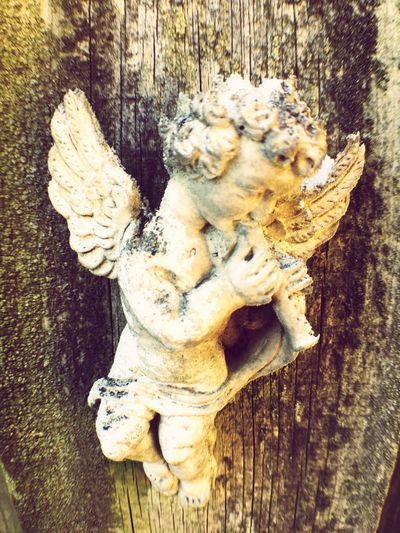 Old Things Art Decor Antiquity Art is Everywhere Old Angel Green Color Wooded Fence Angel Figure No People Wood - Material Art And Craft Day Close-up Creativity High Angle View Representation Craft Sculpture Old Outdoors Wood