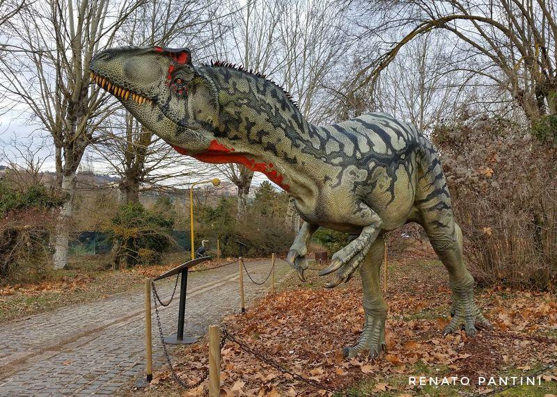 Allosaurus fragilis Allosauro Allosaurus Dinosauro Dinosauri Dinosaur Dinosaurs Chianciano Chianciano Terme Replica  Replicas Sculpture Extinct