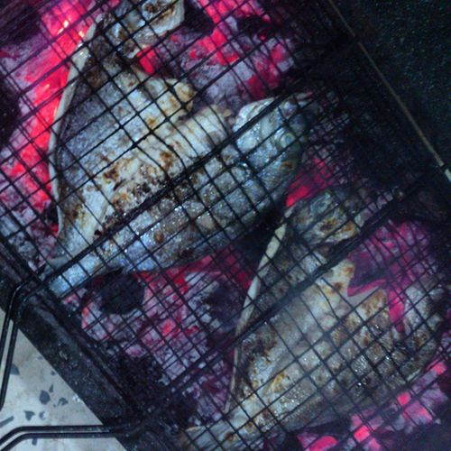 حوت وراته Fish