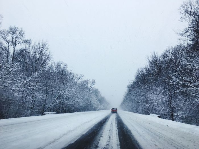 Road Forest White Background The Way Forward Snow Winter Weather Transportation Road Cold Temperature Nature Beauty In Nature