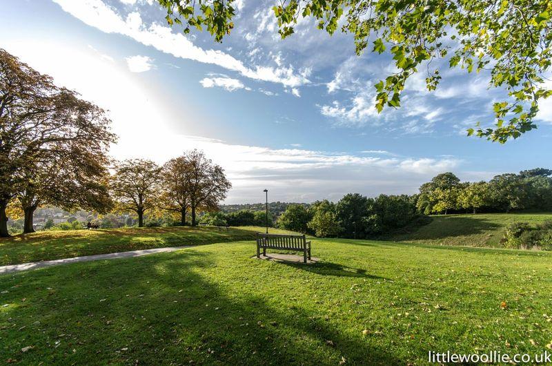 Bromley bench Walking Around Park