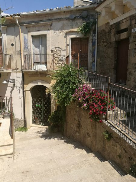 Architecture Flower Built Structure Day Plant Summer Outdoors Building Exterior No People HuaweiP9Photography Flower Head Ragusa Ibla, Sicily Tourism City Travel Destinations