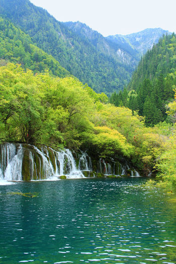 Waterfall Flowing Water Non-urban Scene No People Forest Lake Nature Mountain Tranquility Tranquil Scene Plant Tree Scenics - Nature Beauty In Nature Jiuzhaigou