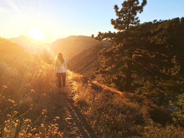 Hiking Angeles National Forest ThatsMe Sunset Nature Nature Walk Hiking Trail Forest California Nature_collection Nature_collection Nature Photography Women Who Inspire You Women Women Of EyeEm