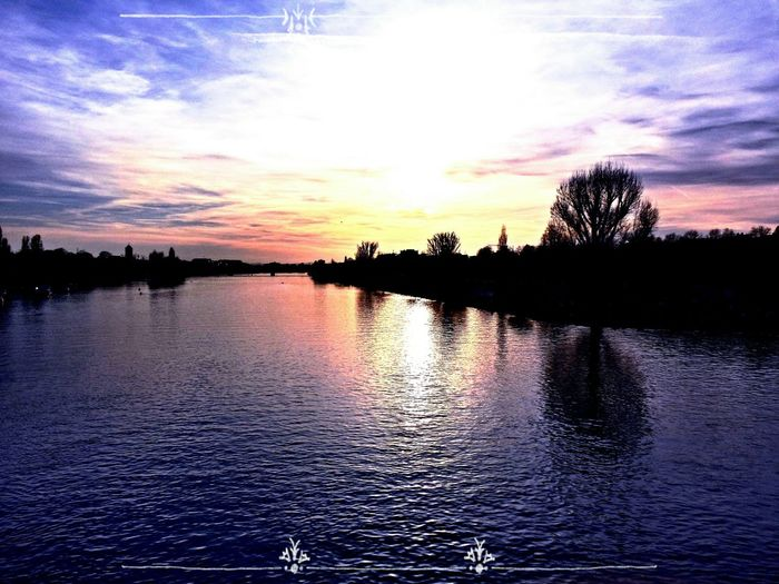 Heidelberg Neckarwiese Chilling With Friends Sunset #sun #clouds #skylovers #sky #nature #beautifulinnature #naturalbeauty #photography #landscape