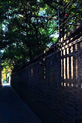 Sunlight Shadow City Life