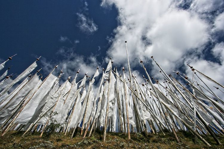 Low angle view of prayer flags on field against sky