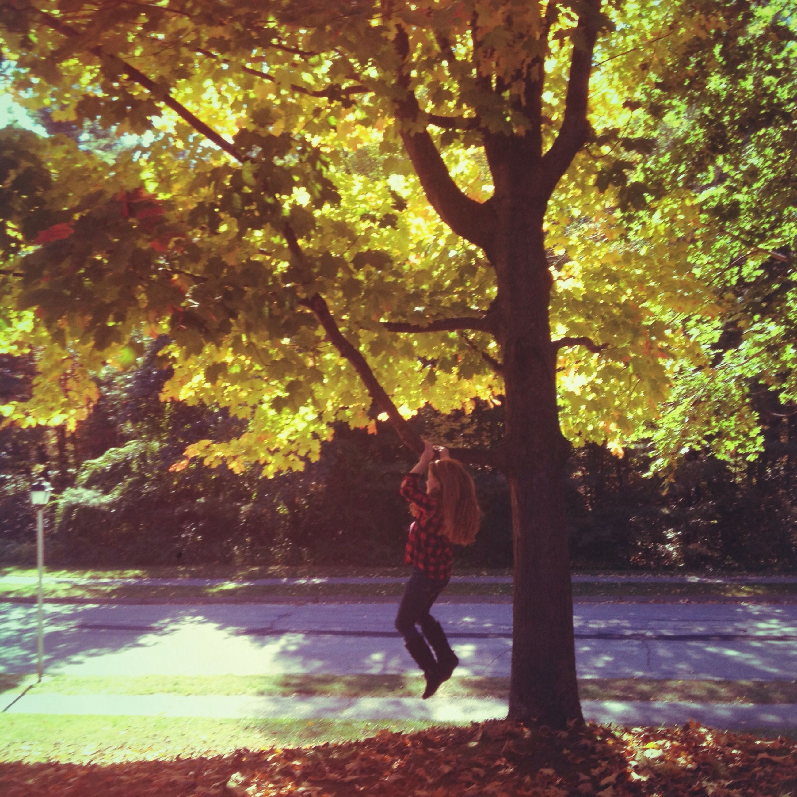 tree, full length, lifestyles, leisure activity, park - man made space, rear view, tree trunk, walking, casual clothing, childhood, sunlight, growth, men, nature, person, side view, standing, shadow