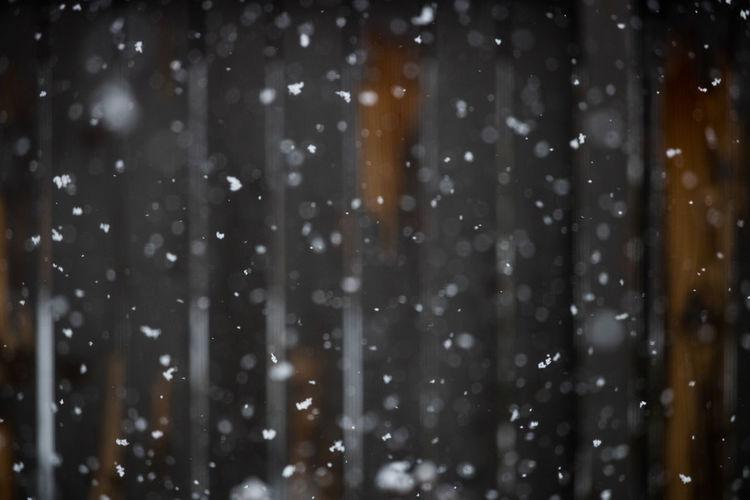 Snowing Winter