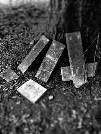 Secluded  Quaker Cemetery Secluded  Cemetery Cemetery_shots Secluded  Scenics Tranquility Tree Trunk Black&white Blackandwhitephotography Black And White Photography Blackandwhite Photography Black & White Blackandwhite