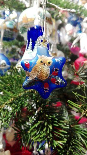 Christmas Around The World Trentino Alto Adige Mercatino Di Natale Hello World Christmas Decorations Reality Light