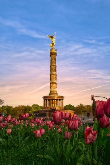 Frühlingserwachen an der Siegessäule // victory column Berlin Siegessäule  Tiergarten Beauty In Nature Flower Nature No People Outdoors Plant Sky Victory Column
