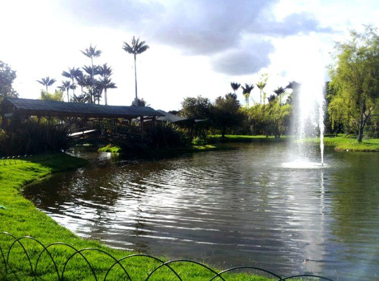 Jardin Botanico ... bogota Taking Photos Bogota. Nature Central Park