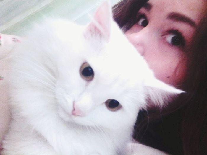 I love this boy and this boy love me?We're so happy ?? Loveyou♥ Enjoying Life That's Me Almetyevsk Cat♡
