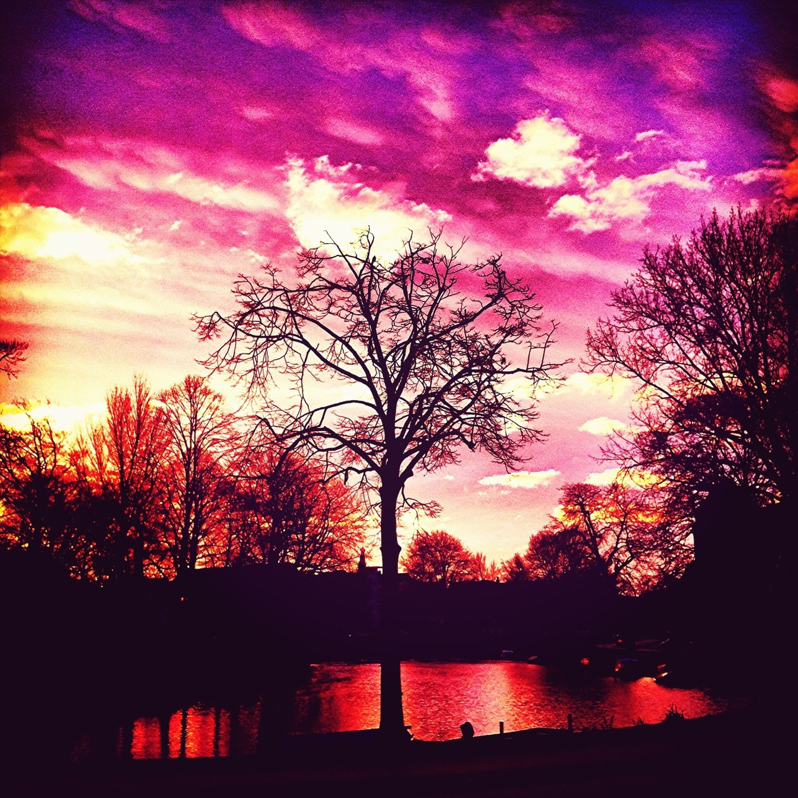 sunset, silhouette, tree, sky, beauty in nature, scenics, tranquility, tranquil scene, orange color, cloud - sky, nature, idyllic, bare tree, water, dramatic sky, lake, branch, cloud, moody sky, dusk
