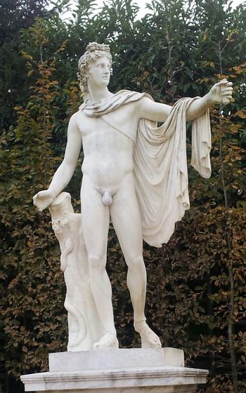 Antique Sculpture ( Copie ) Apollon Du Belvédère Art In The Park Bodies Carrara Marble Sculpture Cultures Gardens Of Château De Versailles History Man Body Parc Du Château De Versailles, France Scupture Statue Versailles France