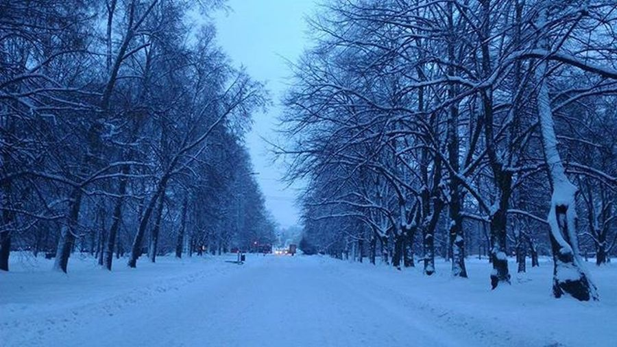 We keep this moment in a photograph! ❄⛄🌌📷 Tartu Eesti Home Landscape Snow Ice Frio