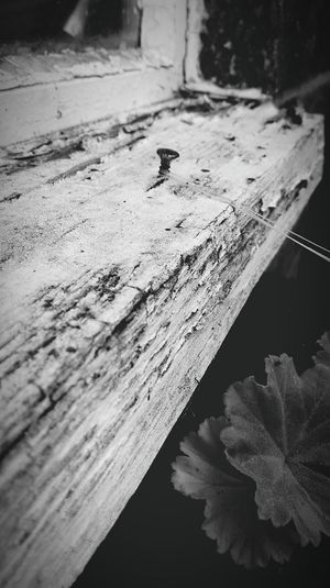 Nailed it Windowsill Windowsills Rotten Wood Nails Nail Black And White Black & White Blackandwhite Black And White Photography String Strings Attached Textures And Surfaces