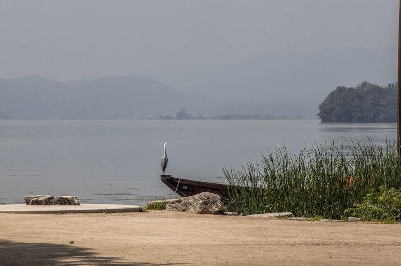 Heron Perching On Boat Moored In River Against Sky