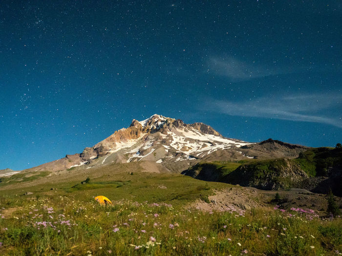 A starry night as seen from Paradise Park on Mount Hood, Oregon. Camping Mount Hood Oregon Adventure Mount Hood National Forest Mountain Stars EyeEmNewHere. EyeEmNewHere EyeEmNewHere Lost In The Landscape
