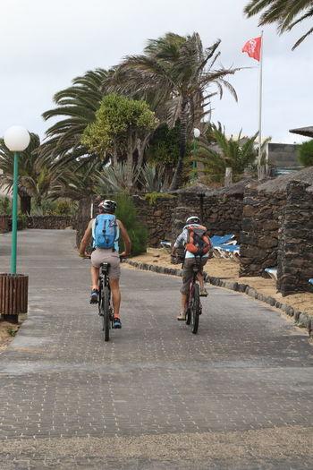 Backpacks Cycling Flat Helmets Holiday Palm Trees Promenade Sky Vacation