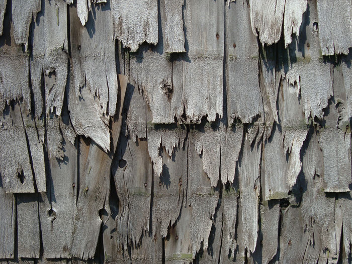 Backgrounds Close-up Day Full Frame No People Outdoors Textured  Vintage Wall Weathered Wood - Material