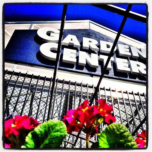 Spring is here! #vermont Flowers Garden Spring Pretty Blossom Vermont Lowes Vt Btv Vt_scenery 802 Vt_scene