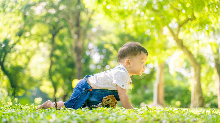 Full length of cute boy crawling on park