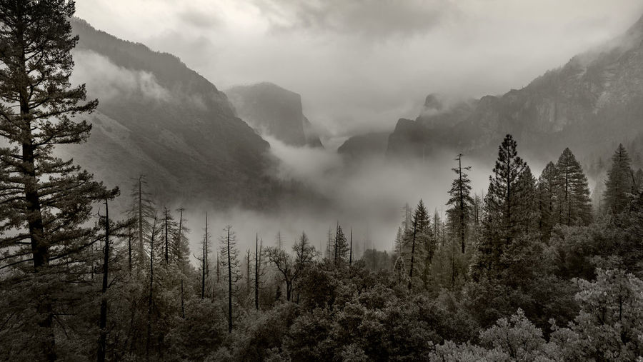 Panorama view of Yosemite National Park with mountains, trees, fog, and waterfalls Yosemite National Park Yosemite Yosemite Valley Mountain Waterfall Landscape Nature Autumn Winter Cloud - Sky Scenics - Nature Beauty In Nature Black And White Panorama Fog Forest