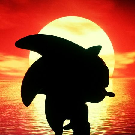 It's time to go home... Sunset Silhouette Sonicthehedgehog Sonic