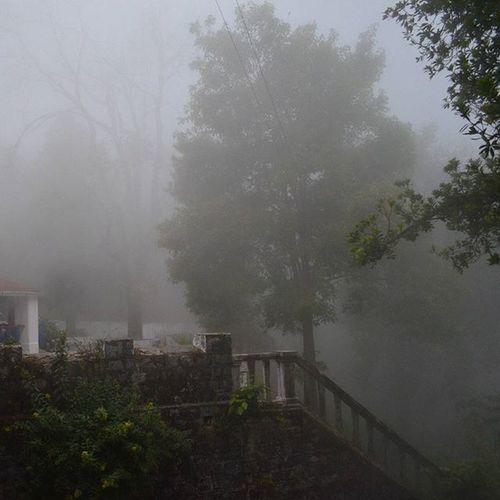 Season of mist and mellow fruitfulness Mussoorie Jharipani OakGroveSchool Mist TBT  Oak OakGrove