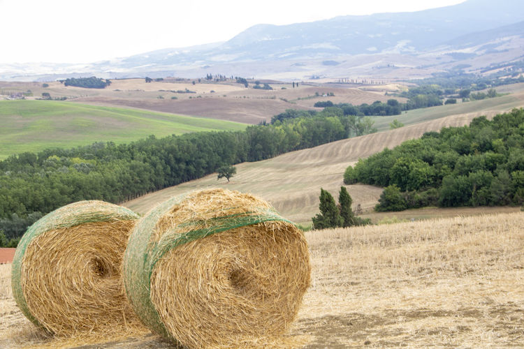 Hay bales on field against mountains