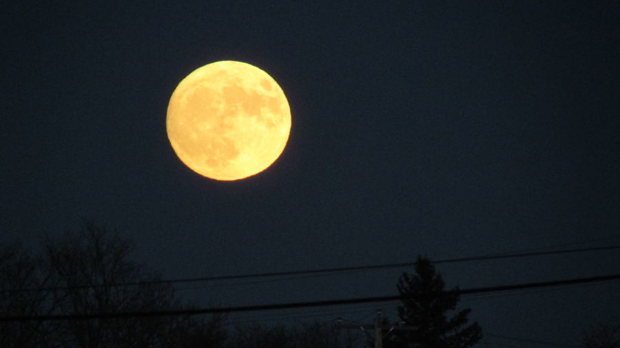Super Moon Nov.13th Cool_capture_ Cadillac Sky Beyond The Trees, Pure Michigan