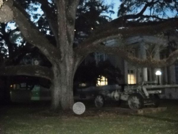 Architecture Built Structure Dusk Ghost Hanging Tree Haunted Historic Illuminated Lake Charles Night No People Orbs Outdoors Spirit Sunset Texas Tree War