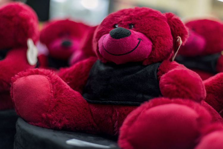 Red Stuffed Toy Toy No People Representation Still Life Selective Focus Art And Craft Animal Representation Softness Winter Textile Clothing Warm Clothing Creativity Wool Focus On Foreground Teddy Bear Red Teddy Bear