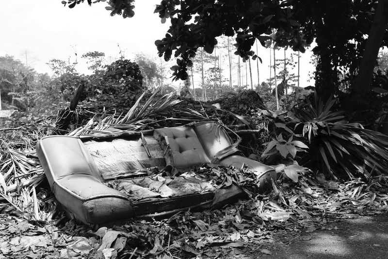 Damaged Old Sofa Be Ruined Garbage Abandoned Obsolete Endoflife No People Outdoors Have No Mire Duty Expired