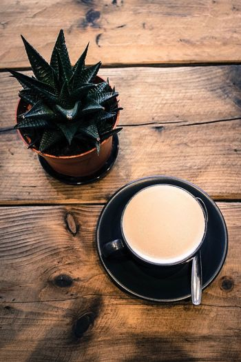 Wood - Material Table Drink Food And Drink Directly Above No People Tea - Hot Drink Indoors  Freshness Close-up Day Relaxing Wooden Texture Interior Cappuccino Saucer Frothy Drink Coffee Cup Spoon Cactus Plant Cactusplant