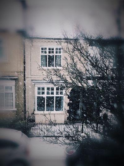 ItsColdOutside Snow ❄