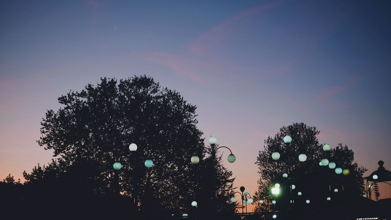 tree, sky, plant, illuminated, nature, silhouette, architecture, lighting equipment, no people, built structure, sunset, low angle view, outdoors, celebration, building exterior, decoration, dusk, growth, night, christmas, festival
