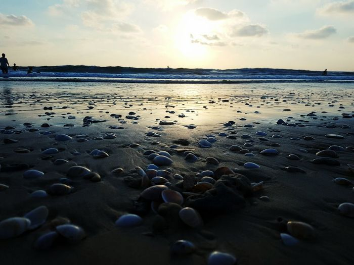 Water Sea Low Tide Sunset Beach Sand Swimming Reflection Sky Horizon Over Water