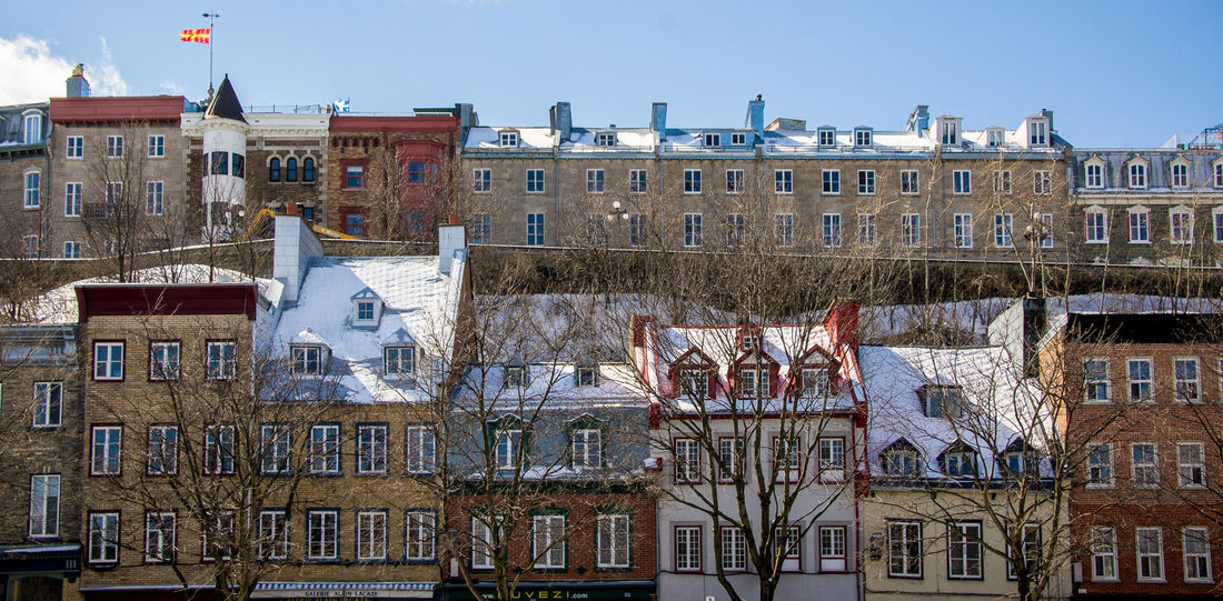 Houses Building Old Buildings Old Quebec Quebec, Canada Quebeccity Rows Of Houses Snow Sunny Windows