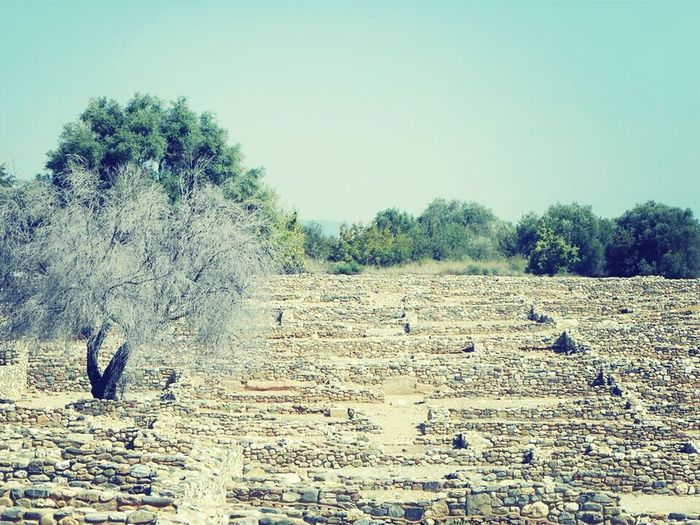 Olinthos Ancient Ruins Greece Traveling