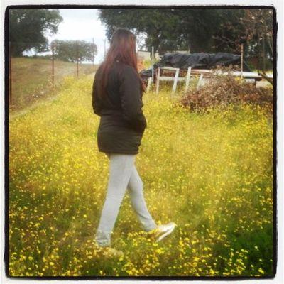 Paseando x las flores