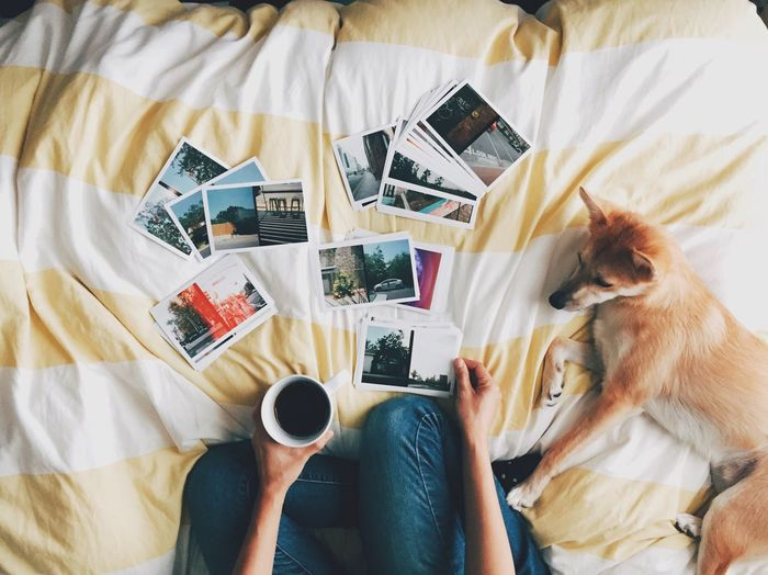 Taking A Break Relaxing Puppy Love Best Friend Morning Rituals Morning Coffee Austin, TX Photos Cozy Good Morning Connected By Travel