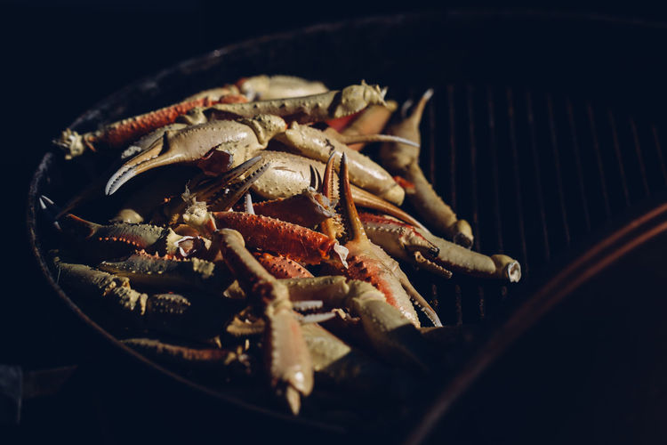 High angle view of crabs on barbecue grill in darkroom