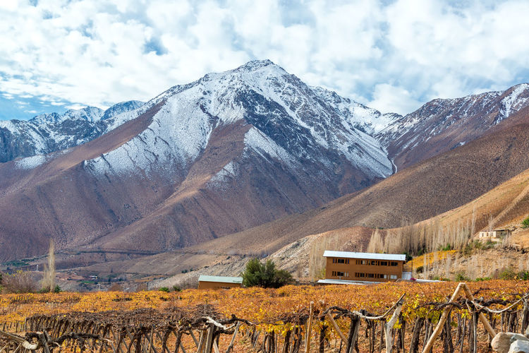 Vineyard by andes mountains against cloudy sky